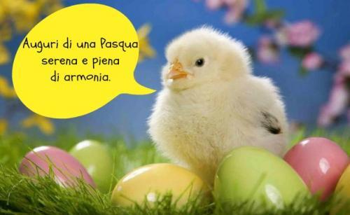 1364397294-pasqua-primaverajpeg