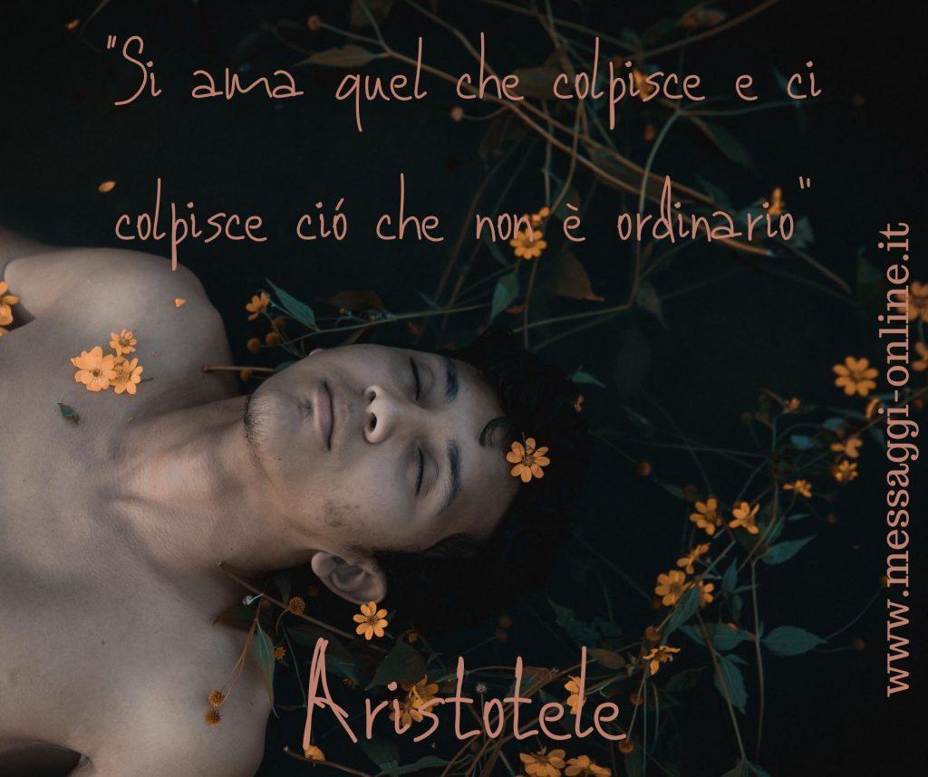 """Aristotele:""""Si ama quel che colpisce e ci colpisce ciò che non è ordinario""""."""