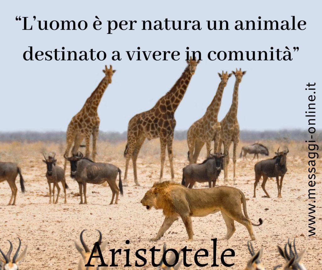 """Aristotele:""""L'uomo è per natura un animale destinato a vivere in comunità""""."""