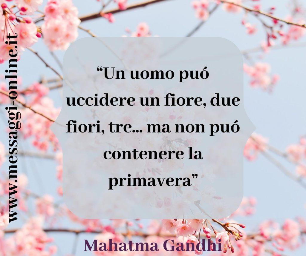 """Mahatma Gandhi:""""Un uomo può uccidere un fiore, due fiori, tre...ma non può contenere la primavera"""""""