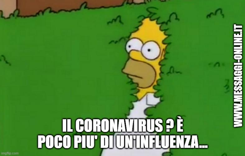 """Anche voi vi state chiedendo che fine hanno fatto quelli che... """"Il Coronavirus è poco più di un'influenza"""" ? Ecco, con il noto meme di Homer Simpson che sparisce dentro la siepe. Meme amaro, purtroppo...."""