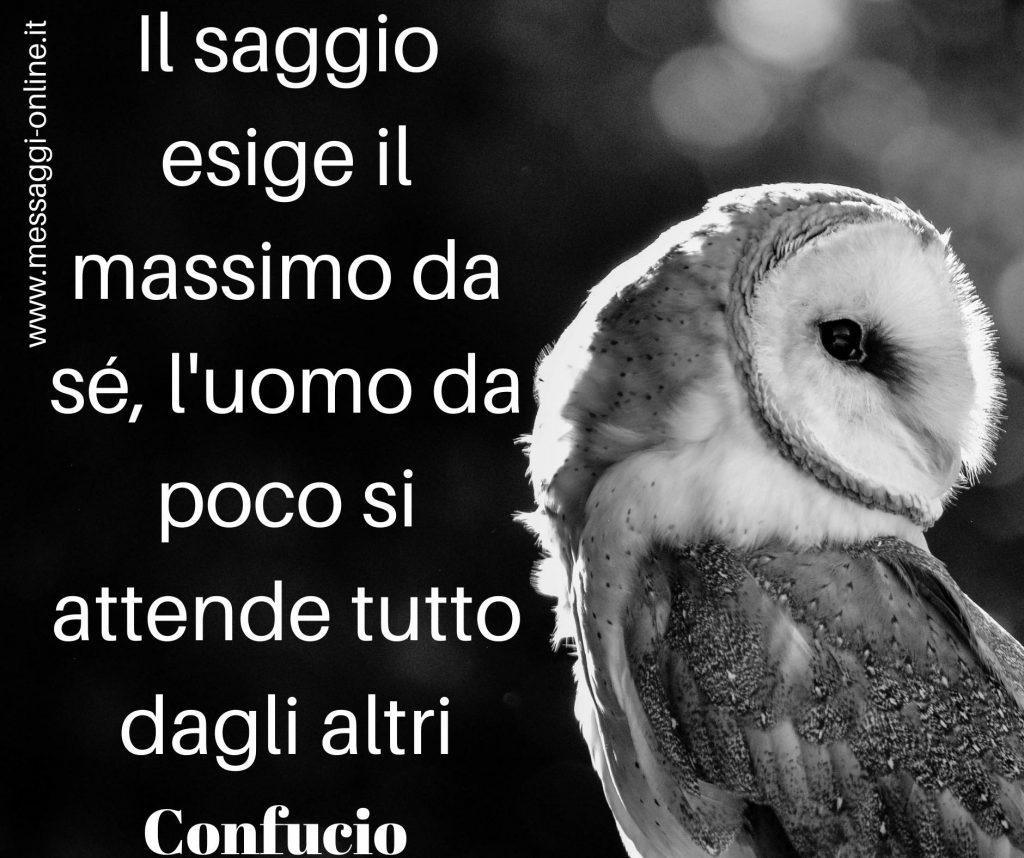 """Confucio: """"Il saggio esige il massimo da sé, l'uomo da poco si attende tutto dagli altri"""""""