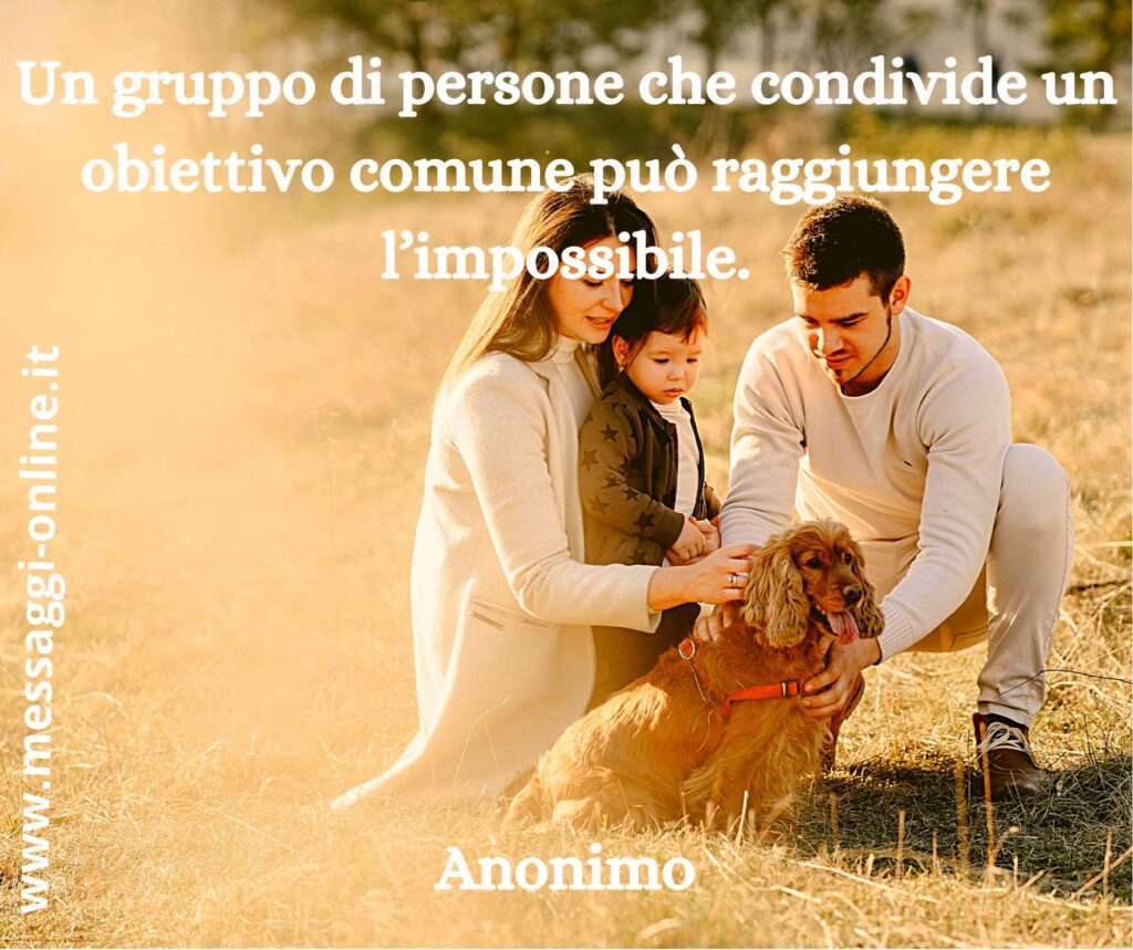 Un gruppo di persone che condivide un obiettivo comune può raggiungere l'impossibile. Anonimo