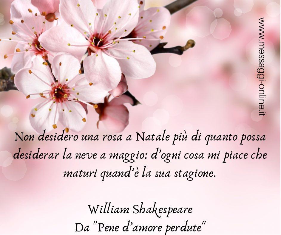 """Non desidero una rosa a Natale più di quanto possa desiderar la neve a maggio: d'ogni cosa mi piace che maturi quand'è la sua stagione. William Shakespeare - Da """"Pene d'amore perdute"""""""