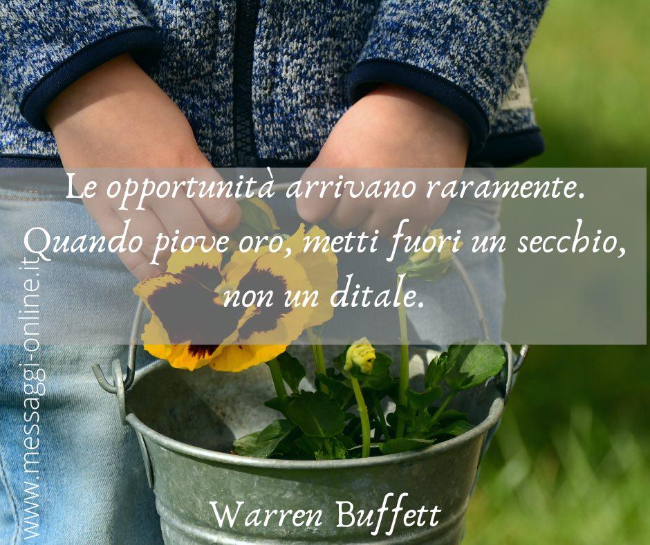 Le opportunità arrivano raramente. Quando piove oro, metti fuori un secchio, non un ditale. Warren Buffett